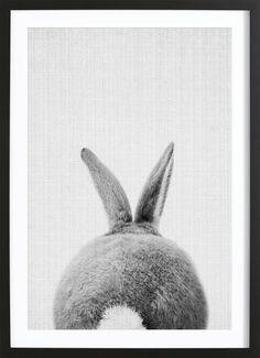 Print 65 - Lila x Lola - Affiche premium encadrée