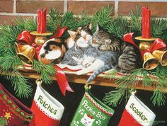 These three kittens fall asleep waiting to see what Santa will put in their stockings. Mary Maxim