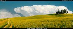 Tuscany, Toskana, Toscana - Panorama Cypress Hill by 5 Minutes Away, via Flickr