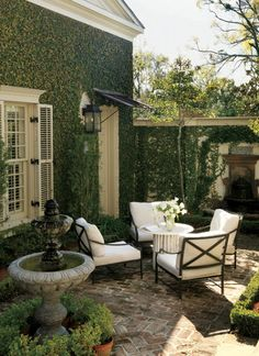 Ivy covered walls in the garden room....feels like an English cottage