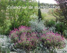 Calendrier de multiplication mai