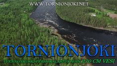 Vuennonkoski Fly Fishing in Tornio River - Vuennonkoski Perhokalastus. #tornionjoki #vuennonkoski #matkakoski #fishing #kalastus #riverbug #putkiperhot #finnlures #salmon #salmonfishing #saumon #lachs #laks #spinfluga #punttikalastus #flyfishing #perhokalastus #rangerkalavinkit #repofly #mustakettu #lax #laxfiske #visitlapland #visittornio #tornio #lohenkalastus #kukkolankoski #kattilakoski #lohensoutu #lohivaappu #vaappu #tubefluer #korpikylä #summer #sights #sweden #lohiperhot #diy #river… Visit Sweden, Salmon Fishing, Fly Fishing, Finland, Photo S, River, Summer, Pictures, Salmon