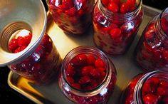 Canning & Freezing Sweet Cherries