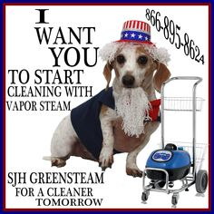 For a cleaner tomorrow, throw away your cleaning chemicals and use vapor steam!