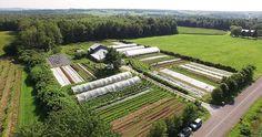 Une micro-ferme en maraîchage bio productive et rentable : les Jardins de la Grelinette!