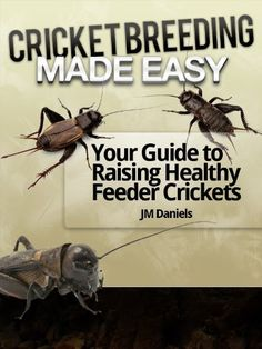 Kindle Cricket Breeding Made Easy: Your Guide to Raising Healthy Feeder Crickets Author JM Daniels, Got Books, Books To Read, Cricket Farming, Bearded Dragon Cage, Meal Worms, Paludarium, Vivarium, Reptiles And Amphibians, Book Photography