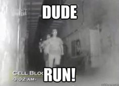 One of the best lines ever! Love Ghost Hunters!