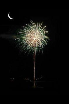 South Carolina fireworks Charleston So cool! South Carolina Homes, Charleston South Carolina, Carolina Pride, Carolina Girls, Southern Comfort, Southern Belle, Southern Girls, Southern Charm, Palmetto State