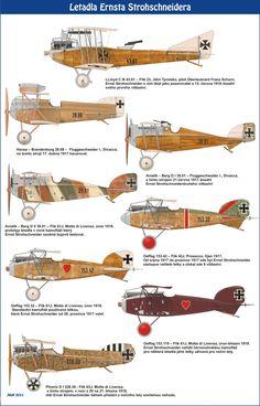 Avions sur lesquels Ernst Strohschneider pilot austro-hongrois a volé durant la première guerre mondiale.