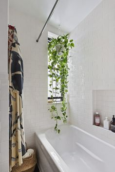 small all white bathroom with houseplant as the color. that will be a happy plant :)