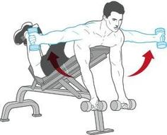 Back Exercise: The Dumbbell Reverse Fly. Looking to tone your back? Want to make your muscles pop? Your back muscles are very aesthetically pleasing while also giving some great benefits to your health!  #exercise #fitness #workout #routine