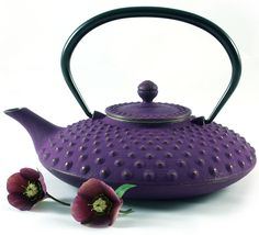 Japanese Cast Iron Tea pot - Iwachu Kambine - Tetsubin