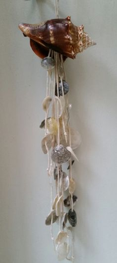 New Item....conch shell with jingle shells wind chime by MidwestSheller, $16.00... place an order by July 31st and receive a free gift ($5 value)