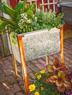 An old cooler holds this plant collection. More creative container ideas: http://www.midwestliving.com/garden/container/creative-containers/page/4/0