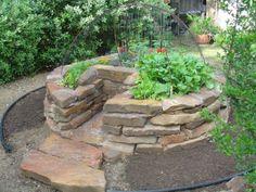organicgreendoctor: purple day, wtea update, the keyhole garden guru