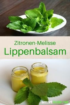 Zitronenmelisse als natürliche Lippenpflege und gegen Herpes The lemon balm is a gentle herb, which you can use versatile. Among other things, she is one of the best remedy for herpes blisters. Zitronenmelisse als natürliche Lippenpflege und gegen Herpes Herpes Remedies, Homemade Cosmetics, Lemon Balm, Natural Lips, Natural Beauty, Tips Belleza, Medicinal Herbs, Lip Care, Natural Cosmetics
