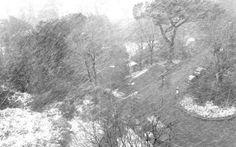 12.bufera in febbraio | Sensazioni d'inverno | amara | Scrivere e pubblicare gratis online poesie, racconti, condividere fotografie e grafica - Sito e blog Rosso Venexiano -