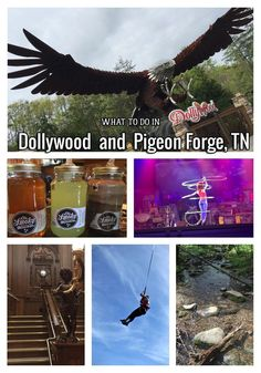 What to do in Dollywood & Pigeon Forge TN