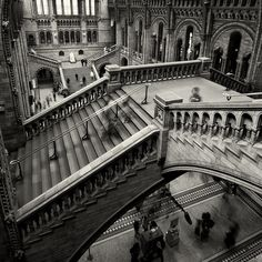 M.C. Escher-like staircases in the Natural History Museum in London