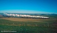 Rural Retreat, Virginia, USA Cabbage Head, Virginia Usa, Rural Retreats, Photo Search, Train Tracks, Roads, Trains, Iron
