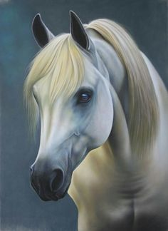 """Discover thousands of images about Persis Clayton Weirs Original Acrylic Painting:""""Stable Mates-Horses"""" Pretty Horses, Horse Love, Beautiful Horses, Horse Photos, Horse Pictures, Horse Drawings, Animal Drawings, Arte Equina, Watercolor Horse"""