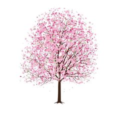 illustration bright color pink tree flowers