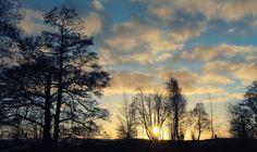 The Sun by disbag on 500px #Blue #Clouds #Finland #Helsinki #Shadows #Sky #Sun #Travel #Tree #Trip #Деревья #Небо #Путешествия #Солнце #Тени #Финляндия #Хельсинки