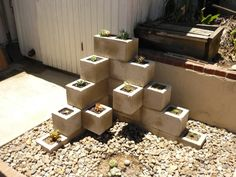 Succulent Cinder Block Garden  easy DIY way to make a garden out of some unlikely material. Succulents + Cinder block = modern touch to your ordinary back yard