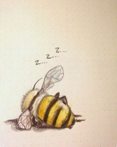 """schinkennudeln: """"Also my last drawing . schinkennudeln: """"Also my last drawing of 2016 was a bee taking a nap """" Art Mignon, Art Et Illustration, Bumble Bee Illustration, Animal Illustrations, Bee Art, Pics Art, Designs To Draw, Drawing Designs, Cute Drawings"""