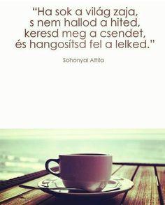 Ha sok a világ zaja. I Love Coffee, Qoutes, Motivational Quotes, Bible, Thoughts, My Love, Reading, Buddha, Yoga