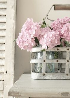 Love the pink flowers with the shutter in background.
