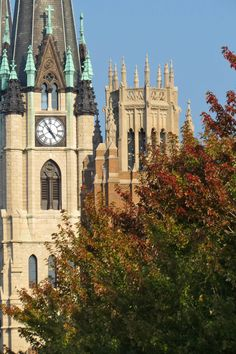 Signs of fall at Marquette University.