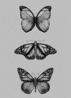 Butterfliez on behance tattoos hipster tattoo, body art tattoos, tattoo ske Pencil Art Drawings, Art Drawings Sketches, Tattoo Sketches, Tattoo Drawings, Cute Tattoos, Body Art Tattoos, Small Tattoos, Hand Tattoos, Tatoos