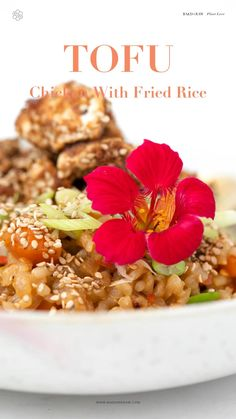 Vegan Dinner Recipes, Healthy Chicken Recipes, Tofu Chicken, Vegan Lifestyle, Fried Rice, Risotto, Fries, Ethnic Recipes, Food