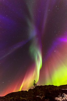 Northern light Aurora Borealis, Central Norway