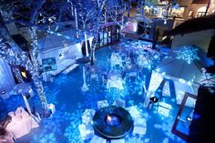 snow globed themed party