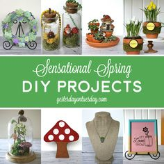 Celebrate SPRING with a DIY Project! #spring #decor #diy #cloche #succulents