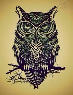 Celtic owl | like the hint of color
