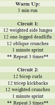 Such a great circuit full body workout!