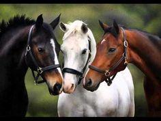 lovak – Google Kereső Horse Photos, Horse Pictures, Animal Pictures, All The Pretty Horses, Beautiful Horses, Animals Beautiful, Cute Horses, Horse Love, Zebras