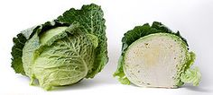 "A white cabbage.   Member of the Brassica oleracea family, sometimes called ""cole crops."" Rich in vitamins A and C."