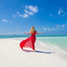 "3,185 Likes, 37 Comments - Maldives (@omaldives) on Instagram: ""The Maldives Islands #Maldives Photo @sweet_dreams8779 #honeymoon #beautifulday #summervibes…"""