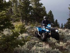 New 2016 Polaris Sportsman 450 H.O. ATVs For Sale in Missouri. 2016 Polaris Sportsman 450 H.O., 2016 POLARIS® SPORTSMAN® 450 H.O. VELOCITY BLUEHardest Working FeaturesPowerful 31 Horsepower ProStar® EngineWith 31 Horsepower and Electronic Fuel Injection (EFI) the 450 H.O. starts flawlessly and runs smoothly in varied temperature and altitude. And when compared to Honda® Rancher® the Sportsman 450 H.O. delivers 15% more power to tow more, haul more and go further.On-Demand True All Wheel…