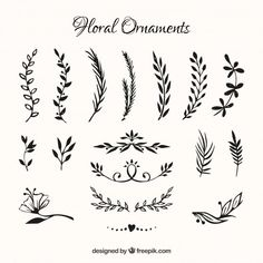 Collection of hand drawn flowers ornament Free Vector Henna Designs, Tattoo Designs, Ornament Drawing, Flower Ornaments, Hand Drawn Flowers, Flower Doodles, Bullet Journal Inspiration, First Tattoo, Silhouette Design