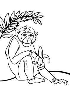 Printable Lemur Coloring Page Free PDF Download At Coloringcafe Pages
