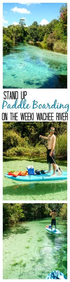 Stand up paddle boarding (SUP) on the Weeki Wachee River in Weeki Wachee, Florida.  Crystal clear, 72 degree water. Beautiful blue green water, manatees, swimming, and a fun trip down the river! Definitely a must see location, if you visit Florida!  Don't forget to check out the mermaids at Buccaneer Bay!