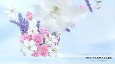 Lenor Commercial. Done in Softimage, rendered with Arnold.