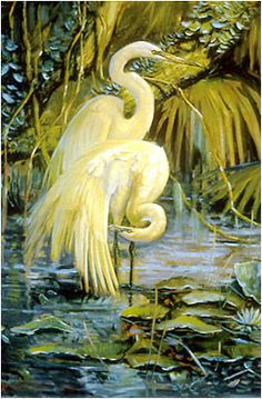 """Most beautiful painting I've ever see """"Hilton Head Egrets"""", oh if I could win the lotto! Watercolor Animals, Watercolor Paintings, Most Beautiful Paintings, Motifs Animal, Bird Artwork, Fine Art Photo, Bird Pictures, Land Art, Illustrations"""