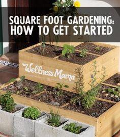 how to get fireblossom planters