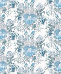 A beautiful floral wallpaper celebrating the Australian totems of the Wattle, Banksia, Proteas & more. Print Wallpaper, Flower Wallpaper, Liberty Wallpaper, Flannel Flower, Modern Baroque, Design Movements, Adventures In Wonderland, Mold And Mildew, Flowers